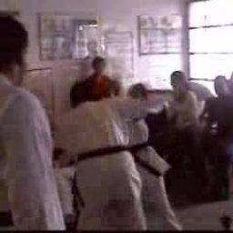 Arnold's School karate skit